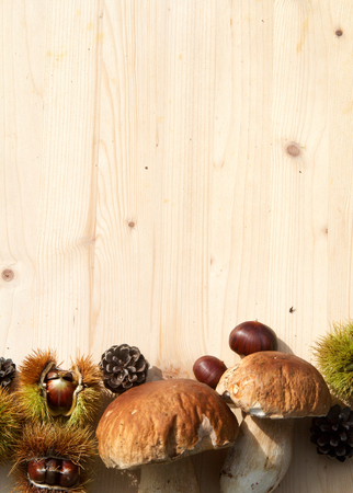 Group of many chestnuts with mushrooms and pinecones