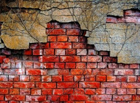 Old and damaged brick wall photo