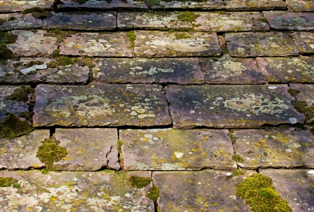 Stone tiles on the roof of  a house Stock Photo - 21249713