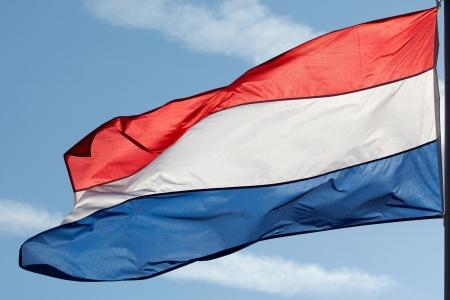 Dutch flag in the sun against the sky photo
