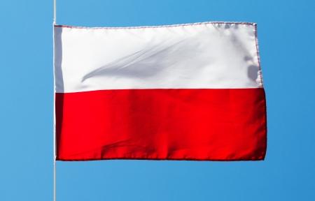 bandera de polonia: Bandera polaca en el viento contra el cielo