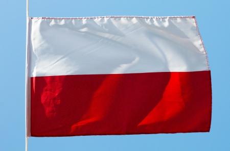 polish flag: Polish flag in the wind against a sky