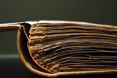 dilapidated: The old opened book on a gray background