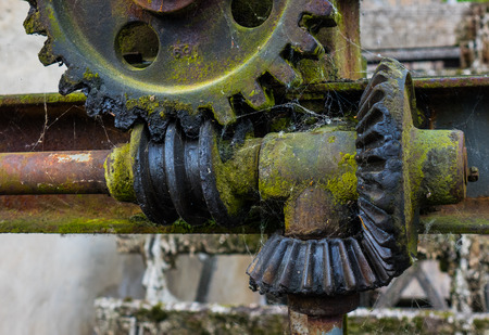 Old and rusty gear in the  sunshine Stock Photo