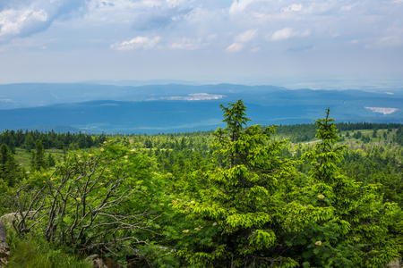 brocken: Mountains and forest of  Harz in the sunlight , Germany . Stock Photo