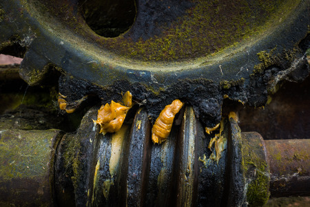 helical: Old and rusty gear in the sunlight . Stock Photo