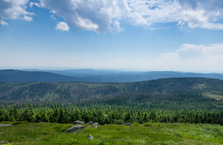 Mountains and forest of  Harz in the sunlight , Germany . Stock Photo