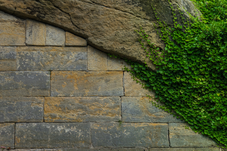 The old stone wall and stonework with green ivy.