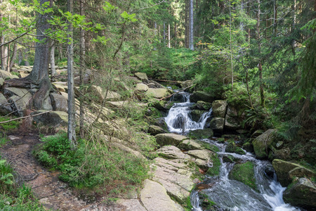 The waterfall on river in Harz, Germany . Banque d'images