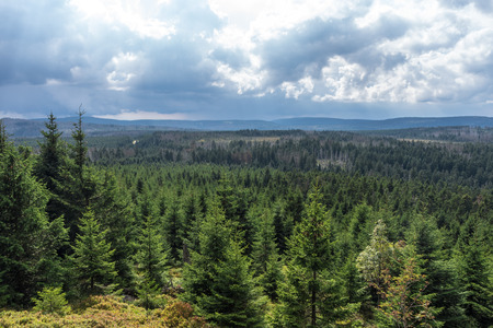 The landscape of mountain in Harz, Germany .