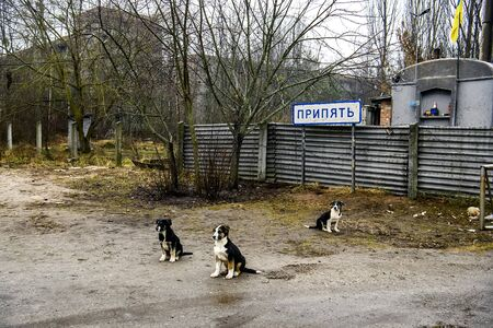 Pripyat sign near the checkpoint at the entrance to the ghost town of Prypiat in Chornobyl Exclusion Zone, Ukraine. Foto de archivo