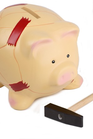Pig with patches Stock Photo