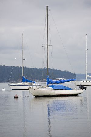 puget: Sailboat tied to a bouy in Puget Sound, Washington