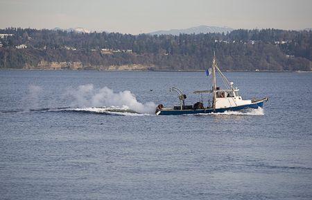 puget sound: Barca da pesca in corso in Puget Sound  Archivio Fotografico