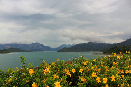 tree marigold: View point from Rajjaprabha Dam in Suratthani province, Thailand Stock Photo