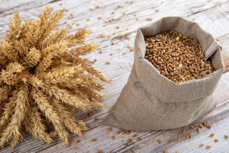 Sack of grains and ears of wheat on a wooden background. Natural products for making flour for bread and other baked goods. 写真素材
