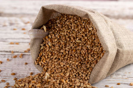 A sack of wheat grains on a wooden background. Natural flour products for baking bread and other pastries.