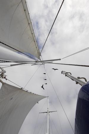 갈라파고스 제도를 통해 프리깃 함으로 배로 항해