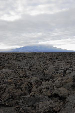 용암 바위 풍경, 푼 타 모레노, Isabela 섬, 갈라파고스 제도, 에콰도르