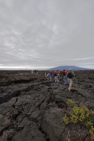 관광객, 푼타 모레노, 이사벨라 섬, 갈라파고스 제도, 에콰도르의 그룹과 용암 바위 풍경