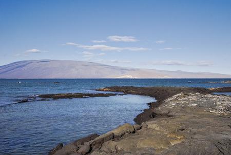 Fernandina island landscape, Fernandina island, Galapagos islands, Ecuador 스톡 콘텐츠