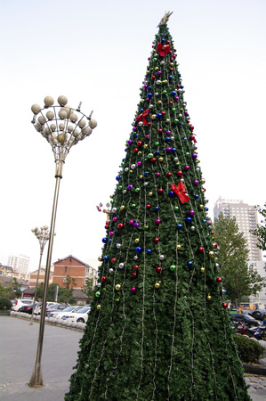 days off: Christmas tree