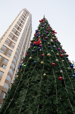 days off: Christmas tree with building