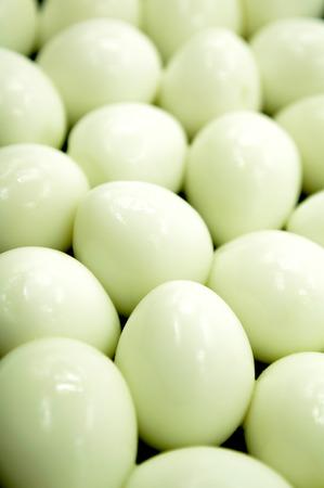 huevos de codorniz: Quail eggs Foto de archivo