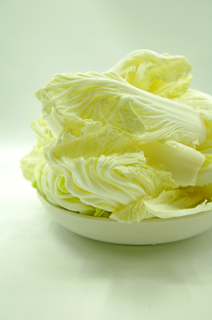 Baby Cabbage Stock Photo