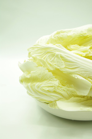 defecation: Baby Chinese Cabbage Stock Photo