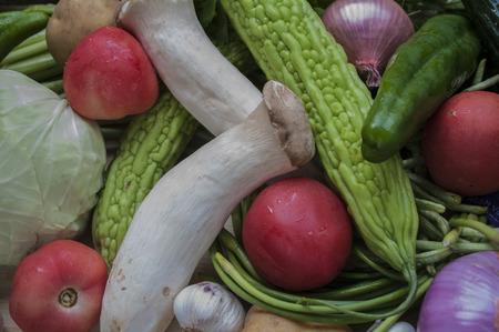 Todos los tipos de verduras Foto de archivo