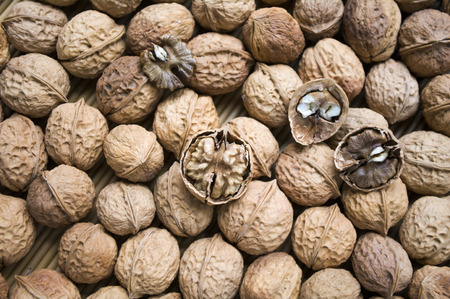 group b: walnut
