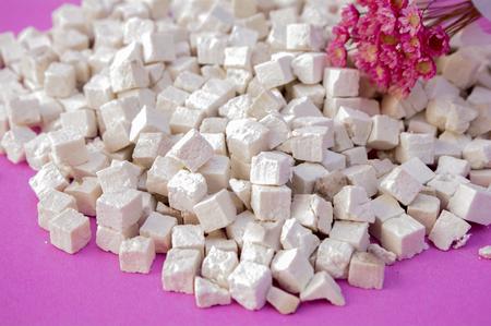 Poria cocos Stock Photo