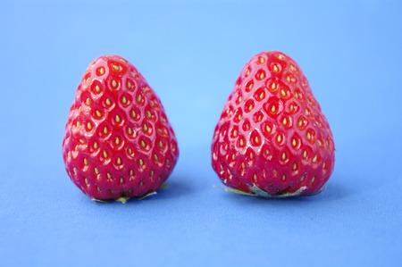 sorgo: fresa