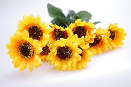 specification: Artificial sunflower Stock Photo