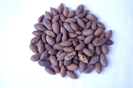 resolving: Chinese torreya nut