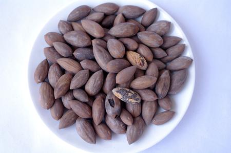 malnutrition: Chinese torreya nut