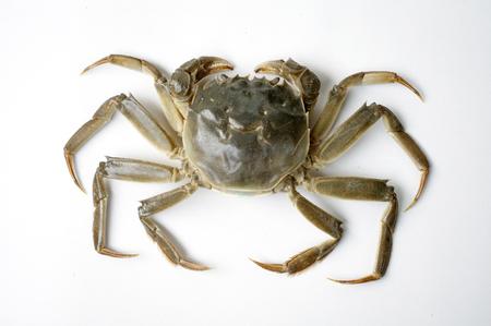 eliminate: Crab