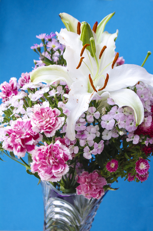 master: Lilies and carnations Stock Photo