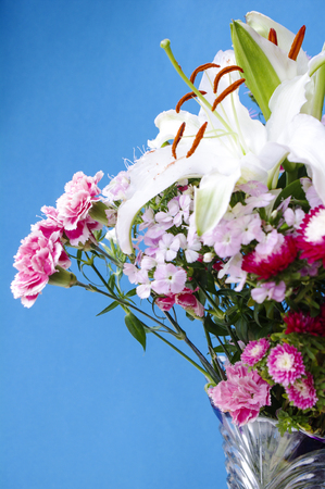 Lilies and carnations Stock Photo