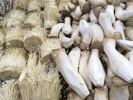 Fresh enoki and king oyster mushrooms