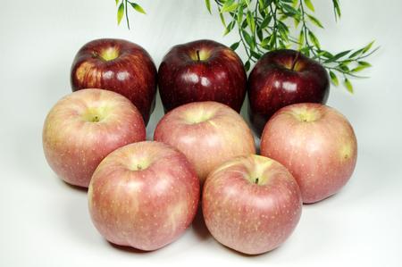 Fuji and huaniu apple