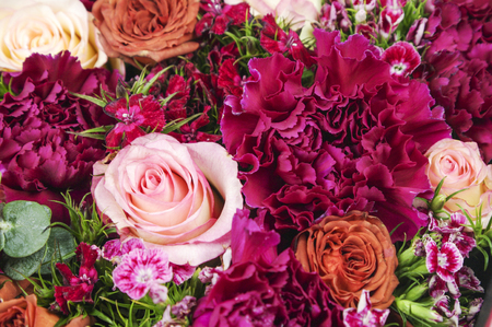 Carnations and rose cartons Stock Photo