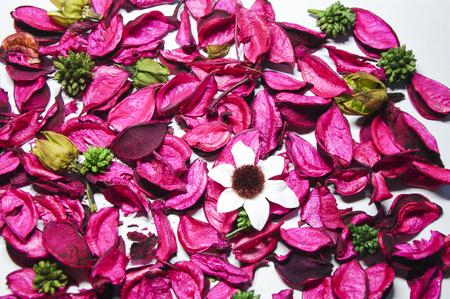 Aromatherapy dry flowers