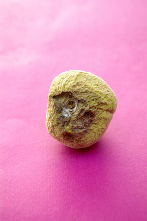 Moldy Peaches Stock Photo