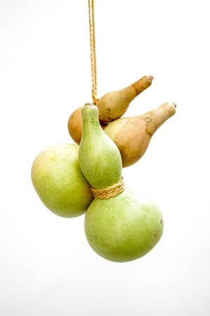 Wenwan gourd