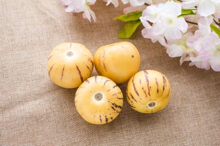 Yunnan specialty ginseng fruit