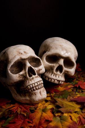 Haloween Skulls