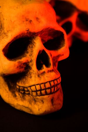 Skull series of pictures for Halloween season