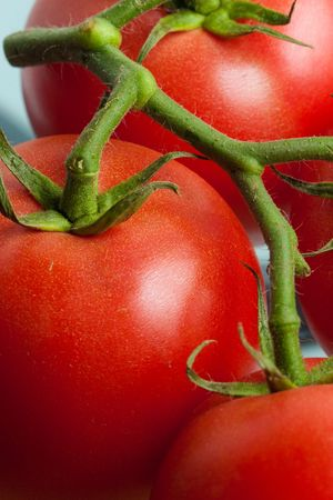 Close-up of fresh organic tomatoes in studio Stock Photo